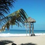 Lo de Marcos Beach 2014
