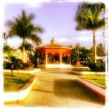 Plaza Back