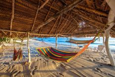 Beach Palapa Hamocks