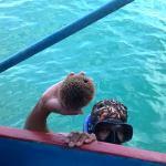 Sea Porqupine