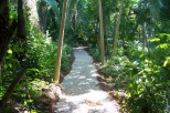 repics_walkpath2