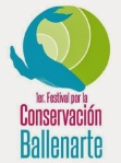 Ballenarte-Puerto-Vallarta-2013
