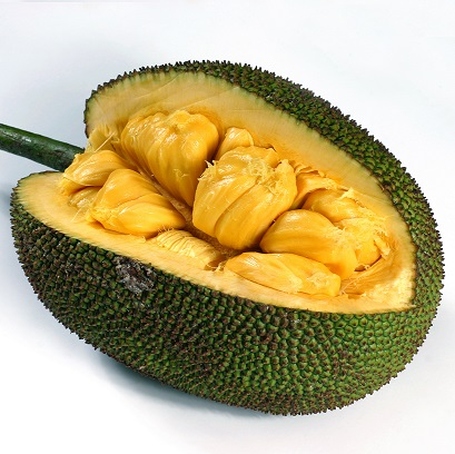 Jackfruit , a very large fruit, found in Mexico is very sweet and ...