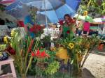 Cut Flowers at Tianguis Lo de Marcos