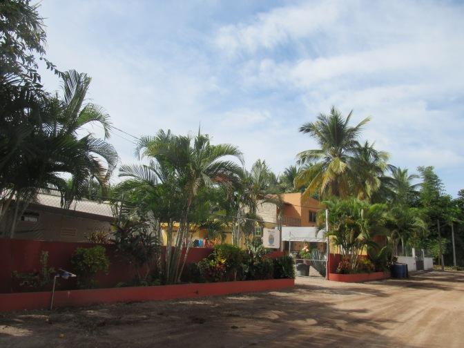 For Sale – Tres Iguanas – Lo de Marcos